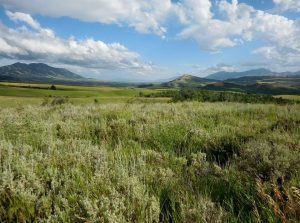 The great plains of Idaho - one of the many sights expert cross country moving companies Idaho can introduce you to.