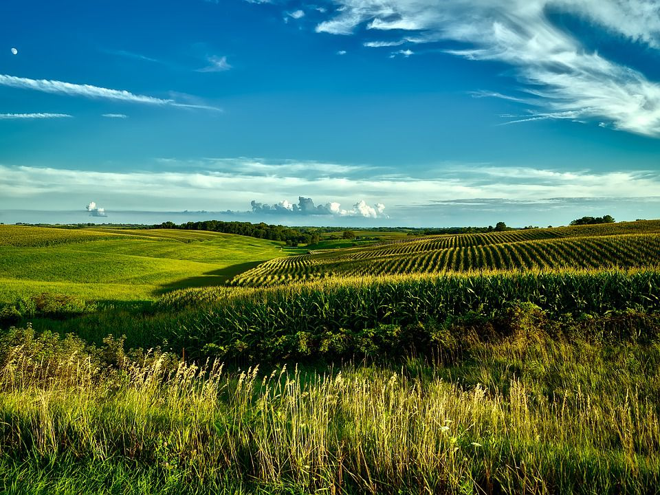 The great countryside of Iowa.