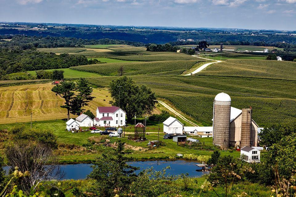 Iowa landscape - breathe in the nature.