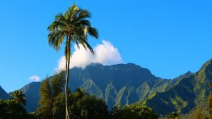 Kauai island - the next perfect home, with a little help from interstate moving companies Hawaii recommends.