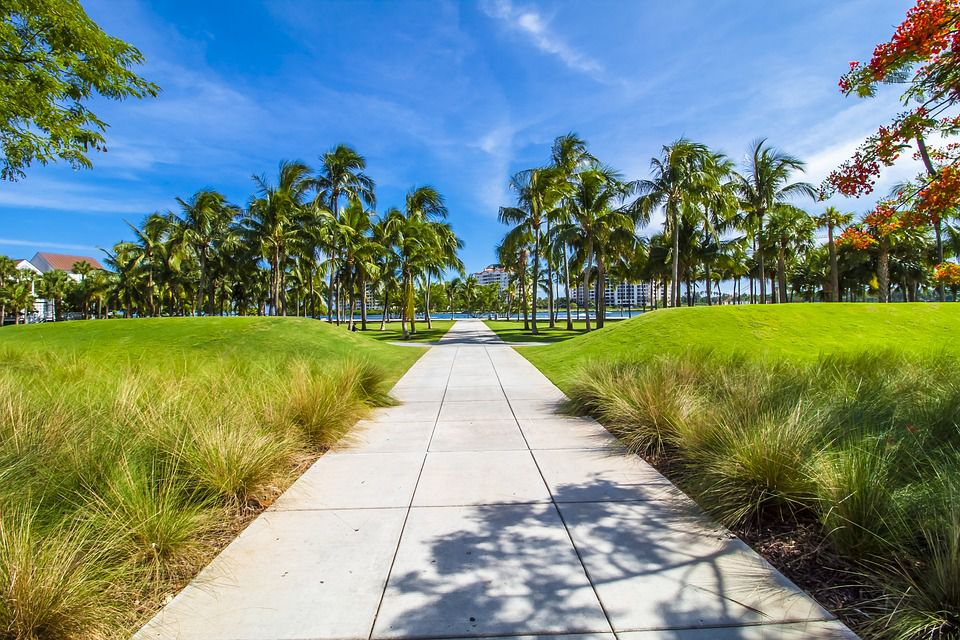 Explore the tropical paradise of Florida with some of the best long distance moving companies Florida.