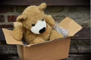 Teddy bear in a cardboard box, ready for the move.