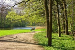 Park and nature in your new area might be the perfect way to come to terms with the relocation.