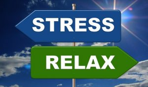 Forget about stress - hire long distance moving companies Nevada