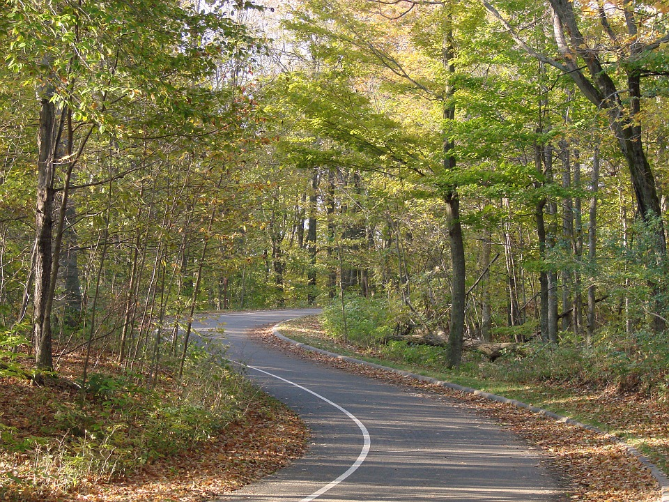 Winding Michigan road, make notice before you start your relocation.