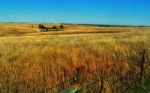 Explore the prairies of Nebraska with the help of certified long distance moving companies Nebraska.