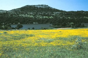 Mt. Scott in Lawton, explore the nature while long distance moving companies Lawton take care of your belongings.