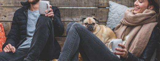 Moving coast to coast with pets