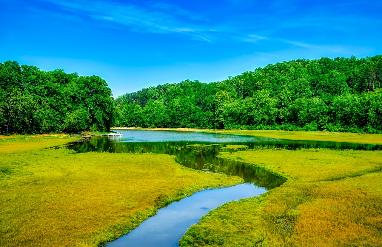 Picture of Tugaloo River in Georgia