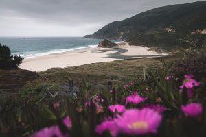 Hidden beach in San Francisco