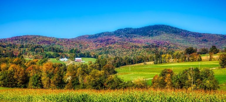 Enjoy Vermont with the help of our long distance moving companies Essex