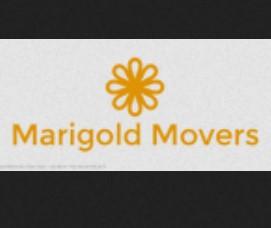 Marigold Movers