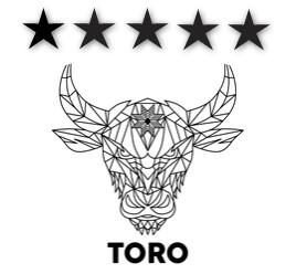Toro Moving