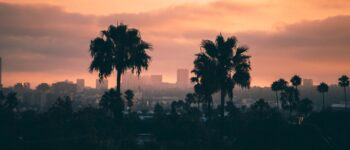 Top Movers in Los Angeles