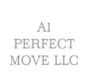 A1 Perfect Move