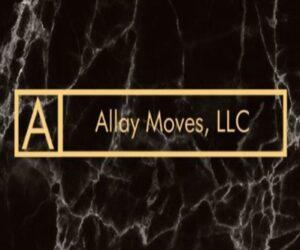 Allay Moves